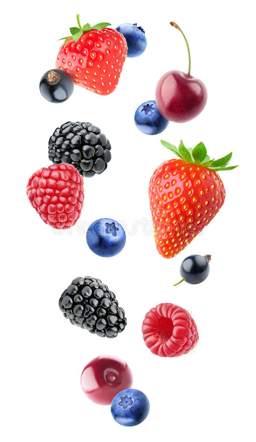 Isolated various berries stock photo