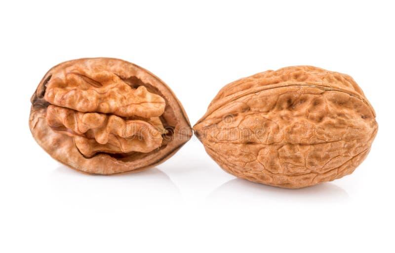 Isolated walnut. Two halves of walnuts isolated on white background stock image