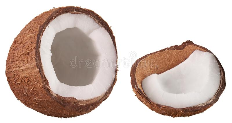 Isolated on white open ripe tropical coco nut fruit. Coconut cut with white flesh. Tropical food concept. Food parts and elements stock photo