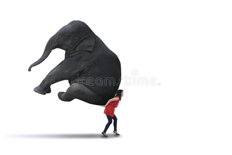 Isolated woman carrying big elephant royalty free stock image