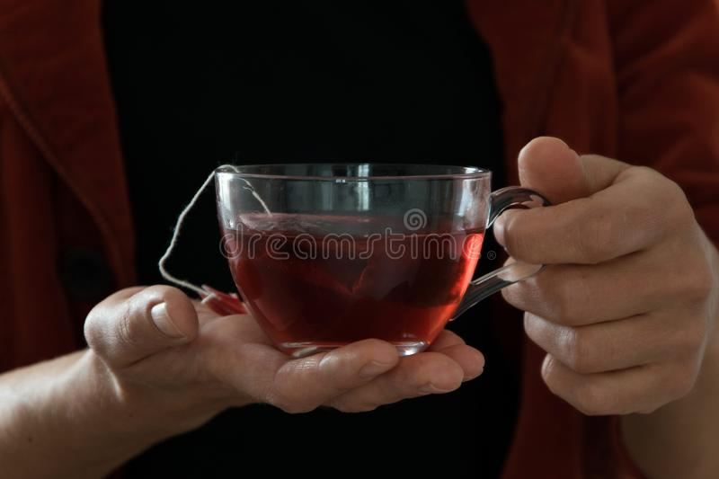 Isolated woman hand holding a cup of hot red tea, white background royalty free stock photo