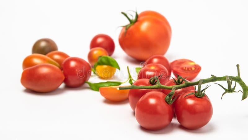 Isolati del pomodoro ciliegia del pomodoro fotografia stock