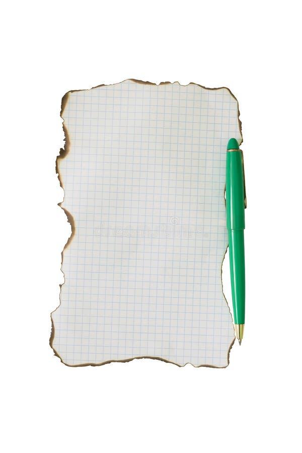 Isolatie van het blad de groene handvat royalty-vrije stock afbeelding