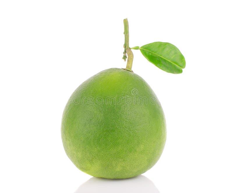 Isolato del pomelo su fondo bianco fotografie stock libere da diritti