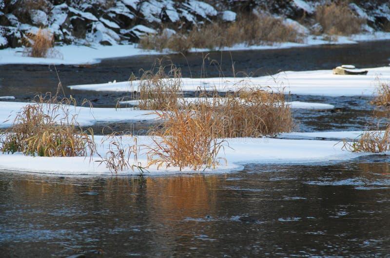 Isole del ghiaccio con erba fotografie stock