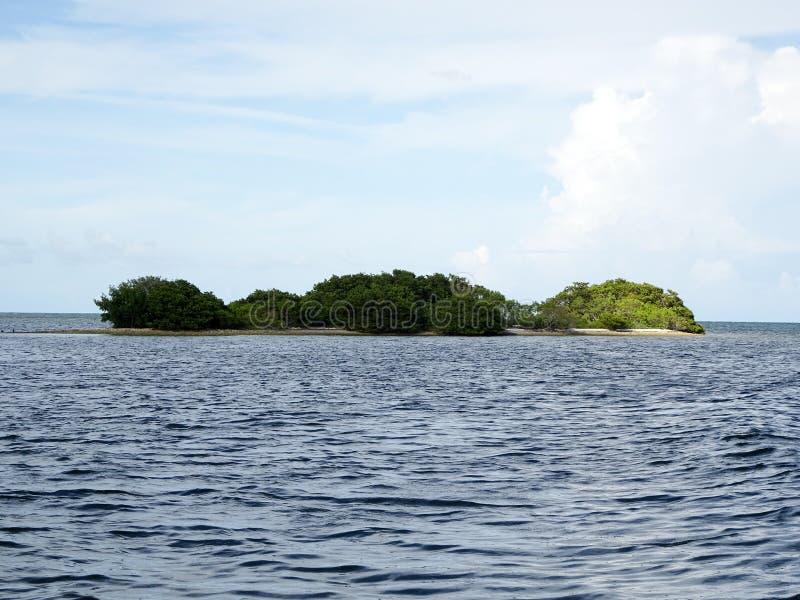Isole della mangrovia ed oceano aperto nelle chiavi di Florida fotografia stock