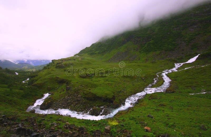 Download Isole di Lofoten immagine stock. Immagine di isola, villaggio - 7310605
