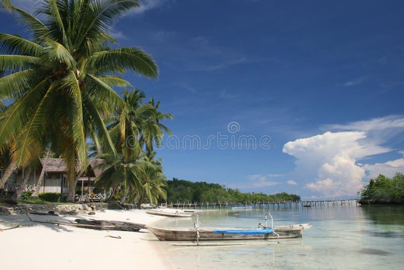 Isole di Togian fotografie stock