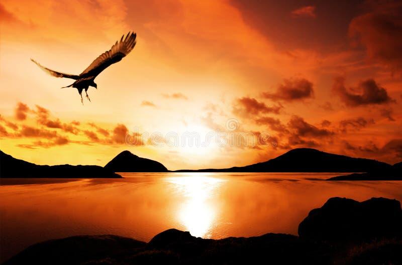 Isole di tramonto fotografie stock libere da diritti