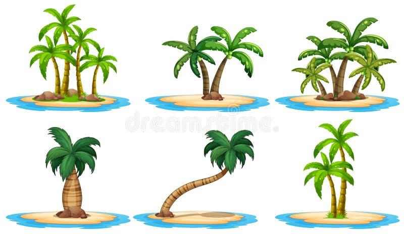 Isole e palma royalty illustrazione gratis