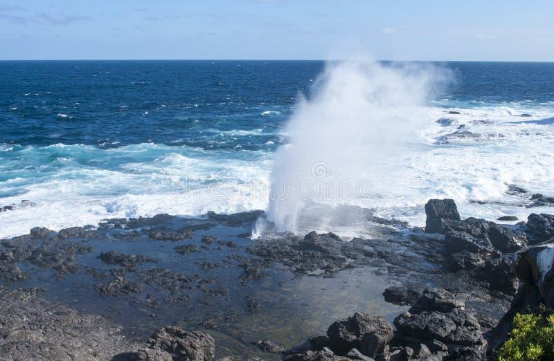 Isole Galapagos fotografia stock libera da diritti