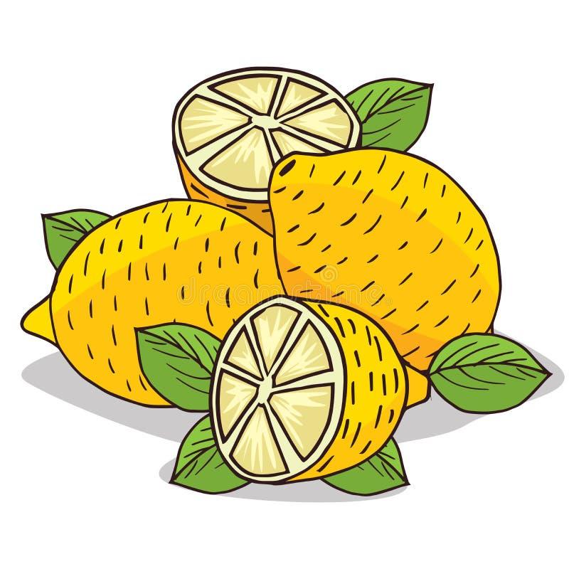 Isoleer rijp citroenfruit stock illustratie