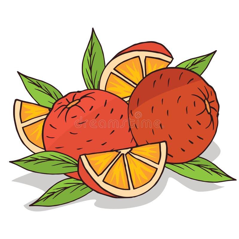 Isoleer rijp sinaasappelenfruit royalty-vrije illustratie