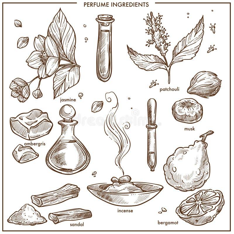 Isoleerden de parfum natuurlijke organische ingrediënten zwart-wit geplaatste illustraties stock illustratie