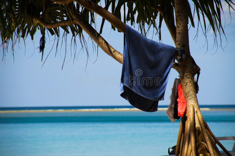 Isolerad blå handduk som hänger i palmträd med den suddiga horisonten av det blåa ändlösa havet på Phuket, Nayang strand, Thailan arkivbild