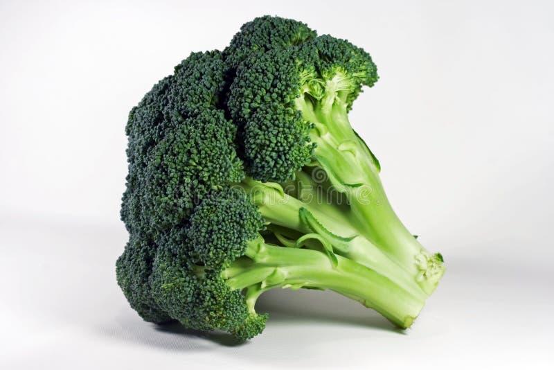 isolerad broccoli arkivbild
