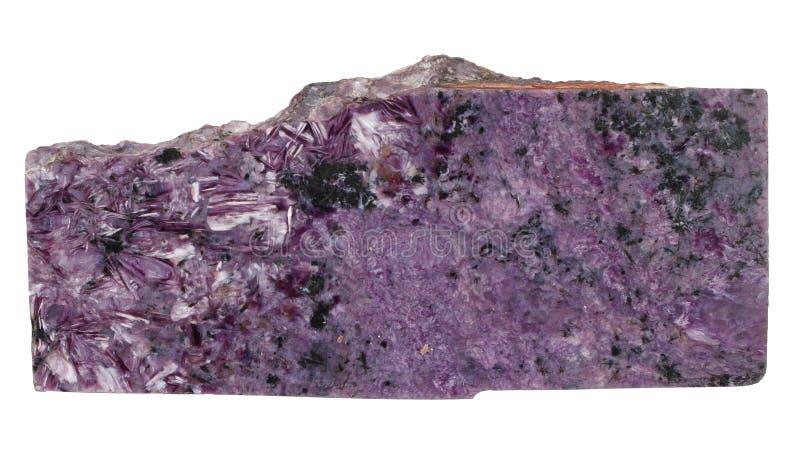 Isolerad Charoite mineral fotografering för bildbyråer