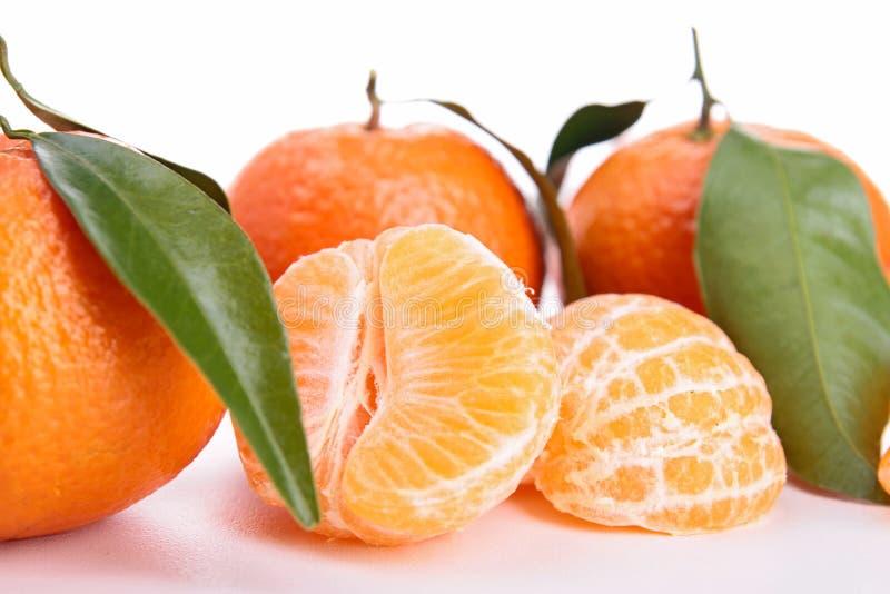 Isolerad clementine royaltyfria bilder
