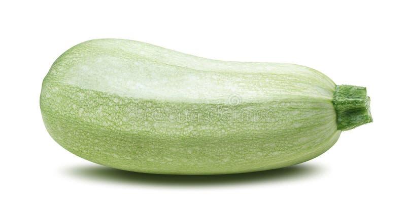 Isolerad enkel zucchini för squashgrönsakmärg royaltyfria foton