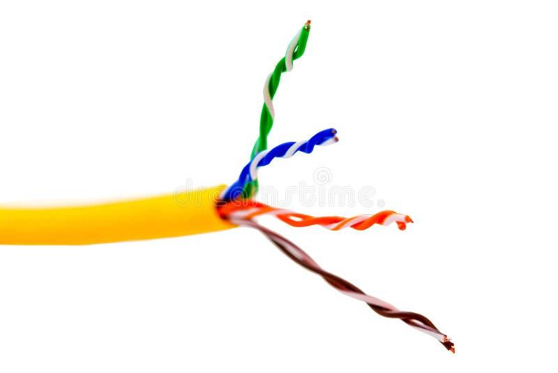 Isolerad Ethernettrådkabel eller gulinglapp-kabel med vridna par för internet- och communacationutrustning close upp royaltyfri foto
