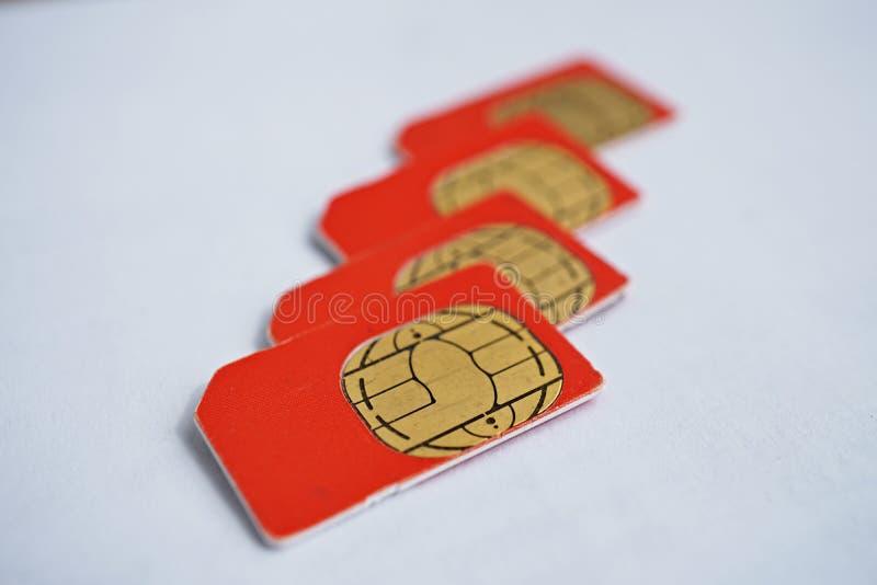 Isolerad grupp av fyra röda SIM-kort som används i mobiltelefonerna (mobiltelefon) med fokusen på guld- mikrochip royaltyfria bilder