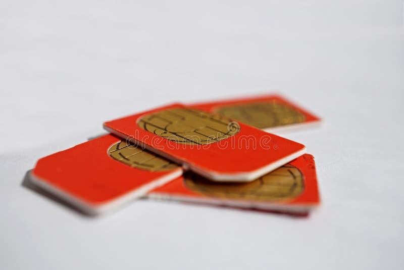 Isolerad grupp av fyra röda SIM-kort som används i mobiltelefonerna (mobiltelefon) med fokusen på guld- mikrochip royaltyfri fotografi