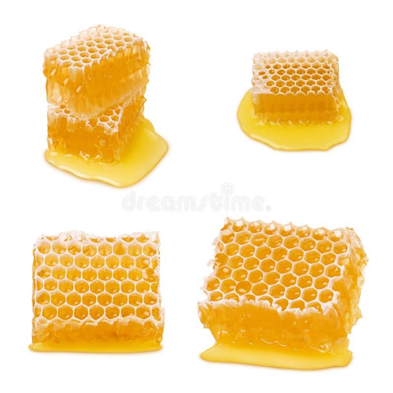 isolerad honungskaka Ställ in av honungskakadelar med naturlig gul honung för vätskebiet som isoleras på vit bakgrund royaltyfria bilder
