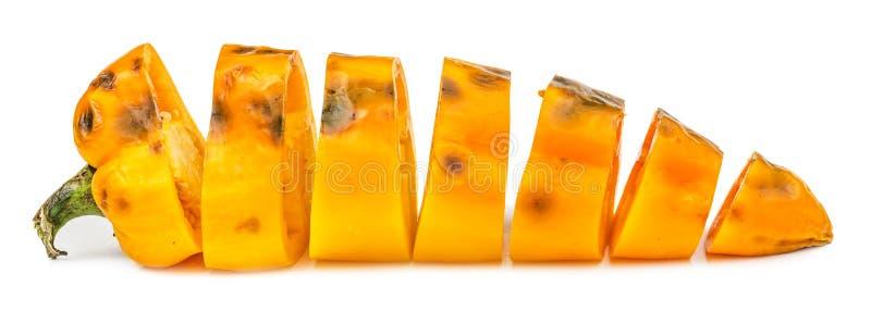 Isolerad huggen av rutten gul spansk peppar royaltyfria bilder
