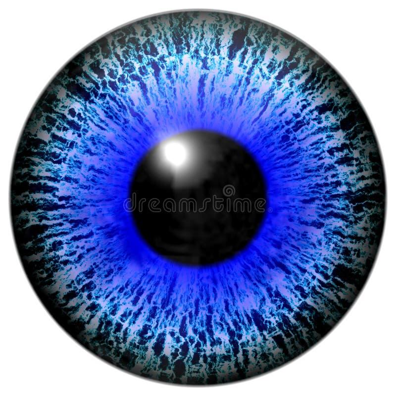 Isolerad illustration av det blåa ögat royaltyfri illustrationer