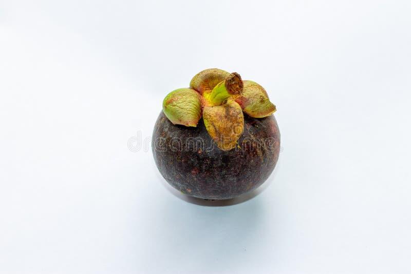 Isolerad mangosteen p? vit bakgrund Mangosteenen är en drottning av frukt i Thailand, och asia frukt har ett sött Nytt mörker royaltyfri foto