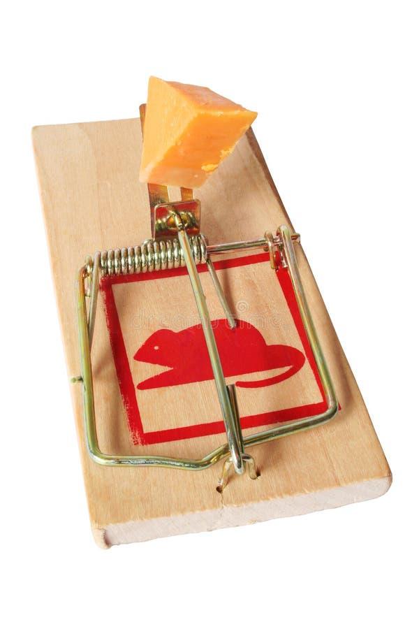 isolerad mousetrap arkivbild