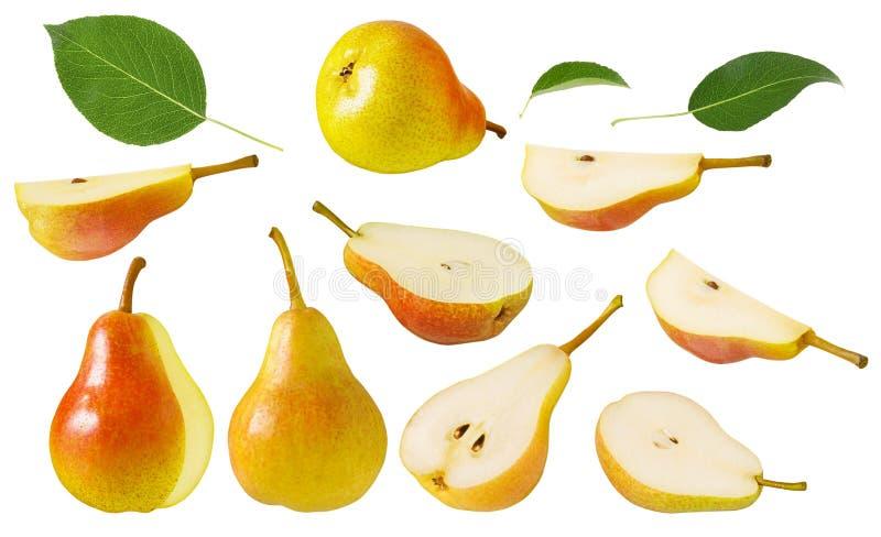 Isolerad p?ronfrukt Uppsättning av röda gula mogna saftiga hela päron med det gröna bladet och snittet in i skivor som isoleras p royaltyfri foto