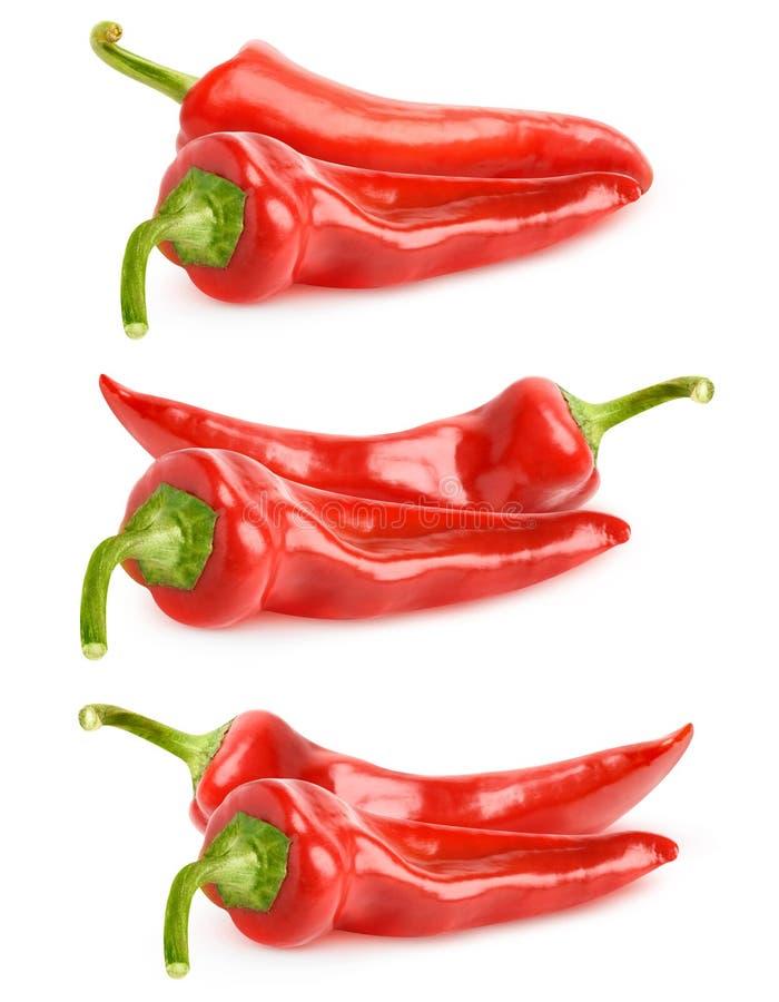 Isolerad röd spansk pepparsamling royaltyfri foto