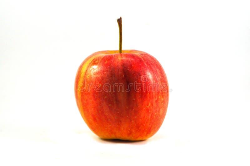 isolerad röd vektorwhite för äpple illustration royaltyfria foton