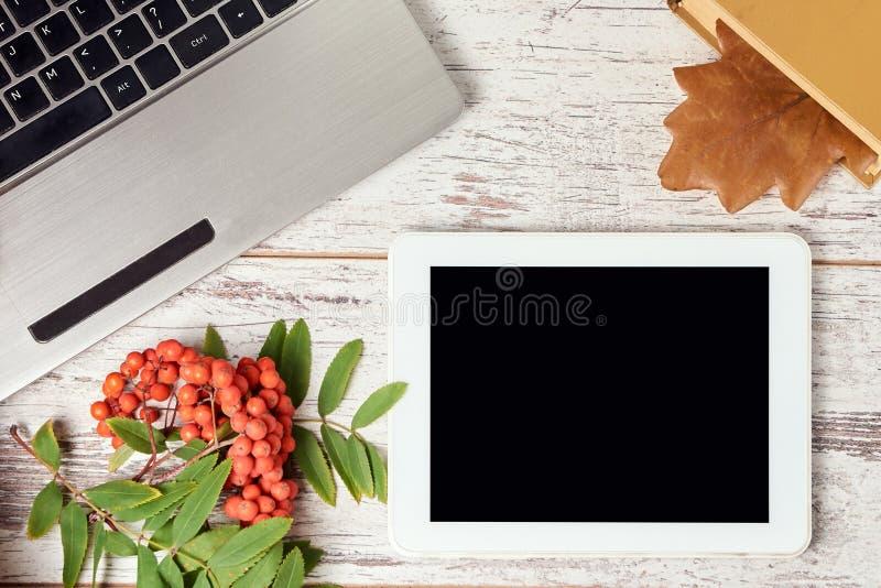 isolerad rönnwhite för bakgrund filial white för tablet för illustration för bakgrundsdatordesign Boka med bokmärken royaltyfri foto