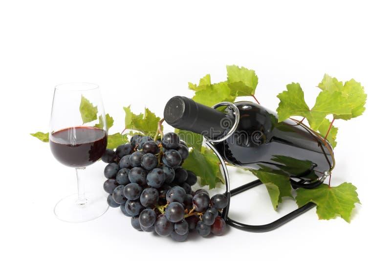 isolerad rött vin för flaska druva royaltyfri fotografi