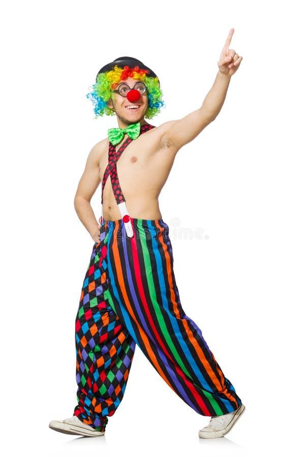Isolerad rolig clown royaltyfri foto