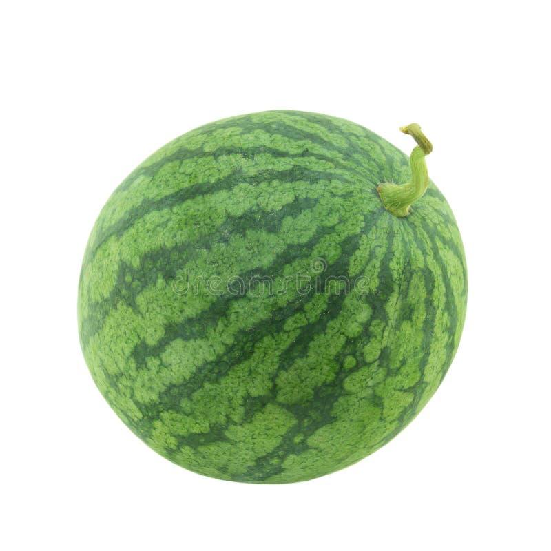 Isolerad vattenmelon royaltyfri fotografi