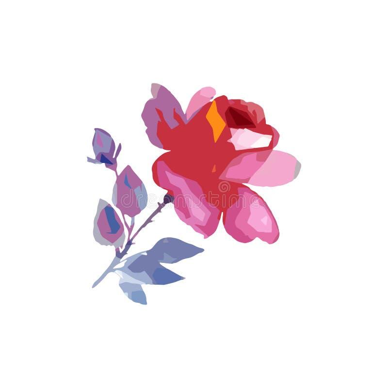 Isolerad vildblommarosblomma i en vektorstil royaltyfri illustrationer