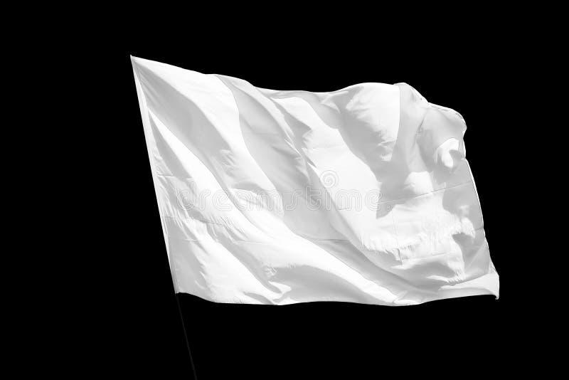Isolerad vit flagga royaltyfri fotografi