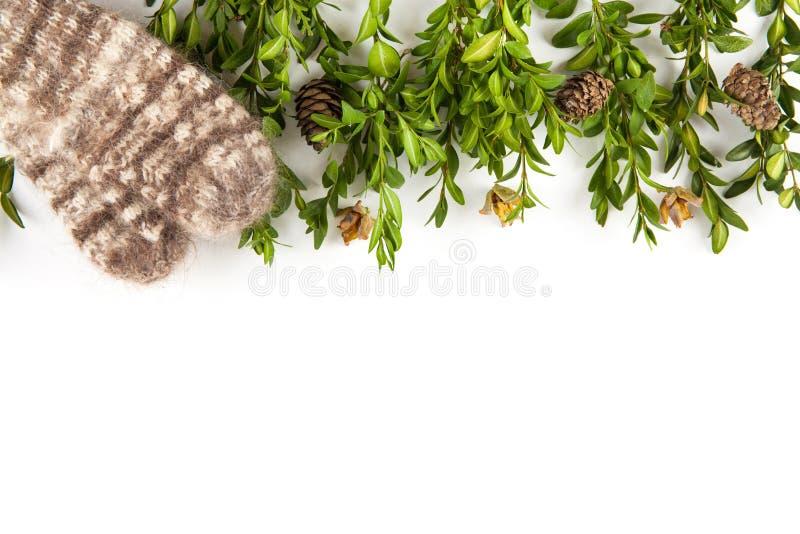 isolerad white för bakgrundsjul garnering royaltyfria bilder