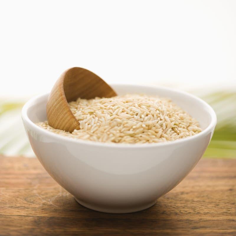 isolerad white för bunke keramiskt korn royaltyfria foton