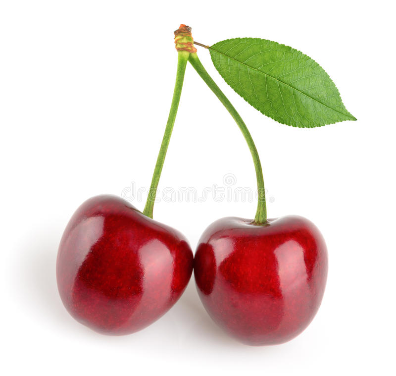 isolerade Cherry arkivfoto