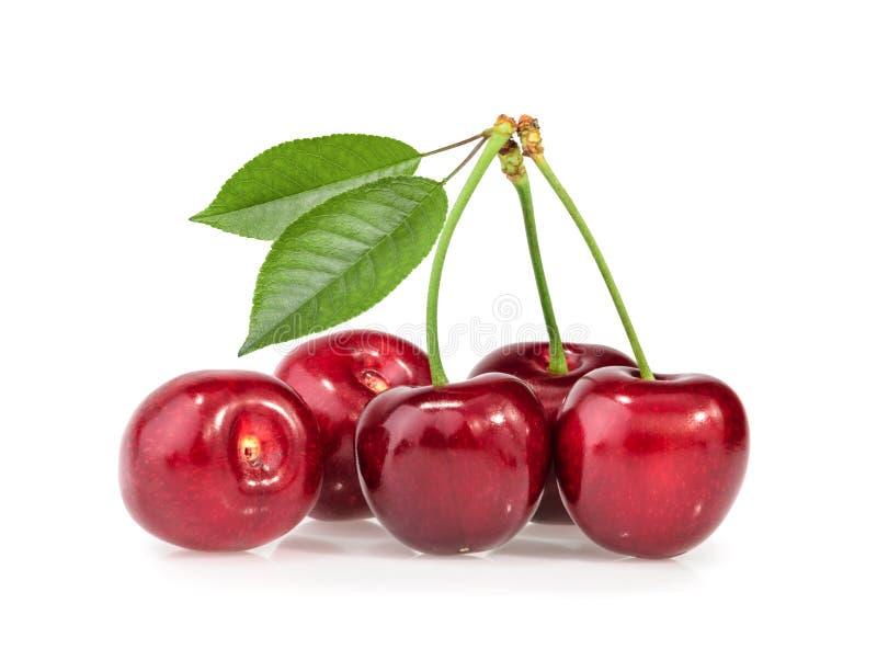 isolerade Cherry arkivfoto