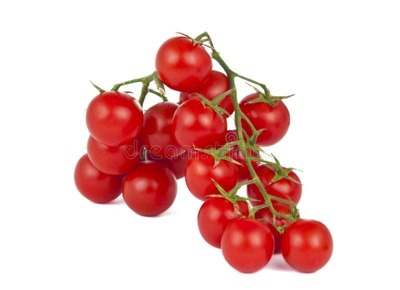 Isolerade Cherrytomater arkivfoton