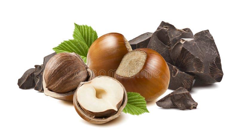 4 isolerade hasselnötter och bruten mörk choklad arkivfoton
