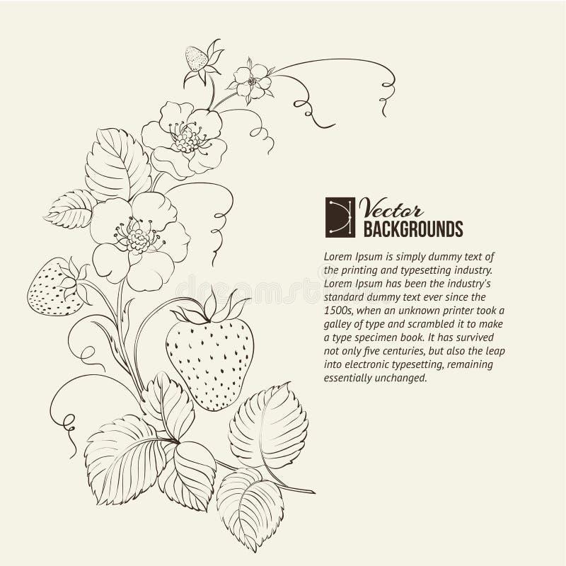 Isolerade jordgubbar. royaltyfri illustrationer