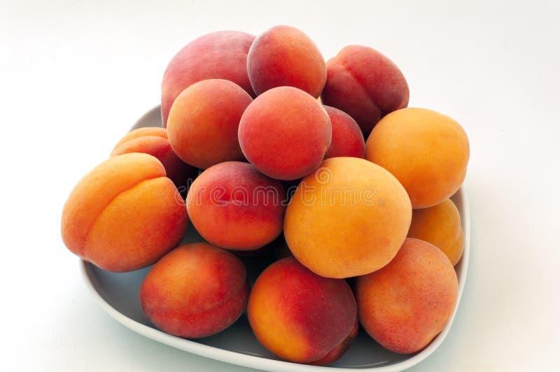 Isolerade nya saftiga persikafrukter och mogna aprikors som isolerades på den vita plattan Sommarfruktbegrepp N?rbild royaltyfria foton