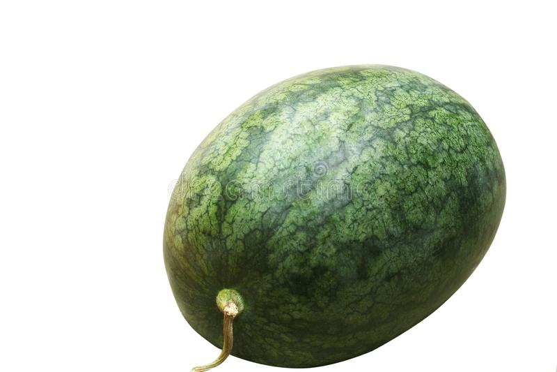 Isolerade nya vattenmelon fotografering för bildbyråer