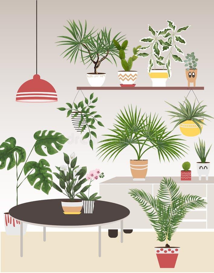 Isolerade objekt av inomhus växter i vattenfärg utformar calla stock illustrationer